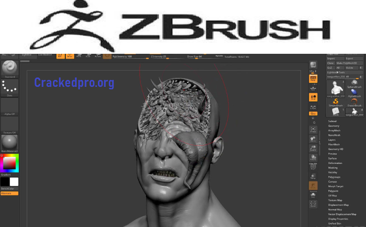 Pixologic Zbrush Free Download